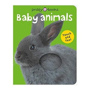 Baby Animals Touch and Feel Book