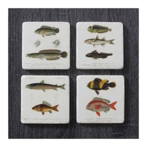 Fish Resin Coaster - S4