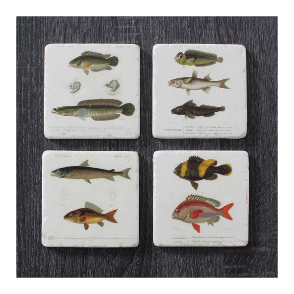 Fish Resin Coaster - S4