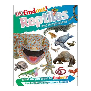 DKfindout! Reptiles and Amphibians Paperback