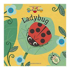 Ladybug Board book – Lift the flap